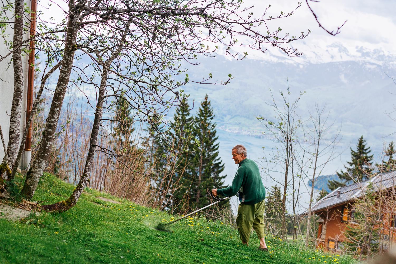 Rigi Ferdi, Schweiz 2015
